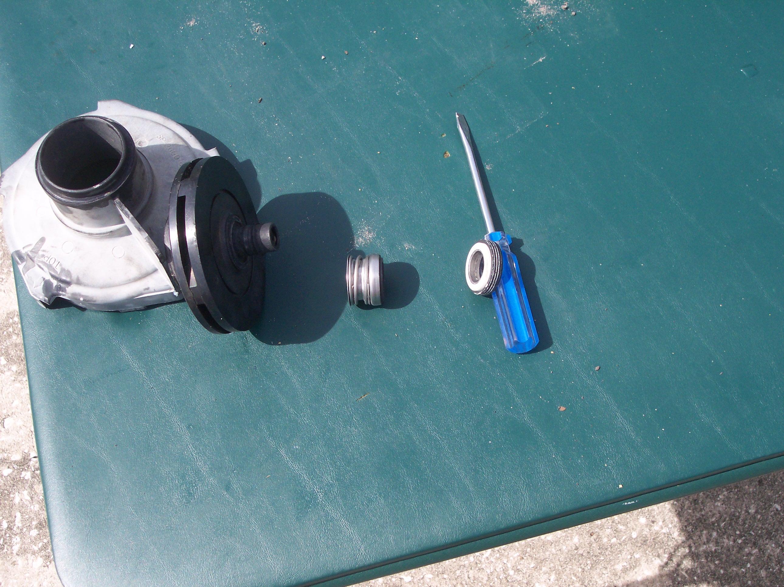 Anatomy of a pool pump for Pool pump motor installation